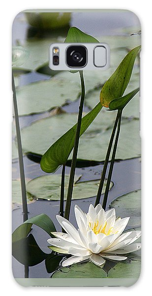 Water Lily In Bloom Galaxy Case