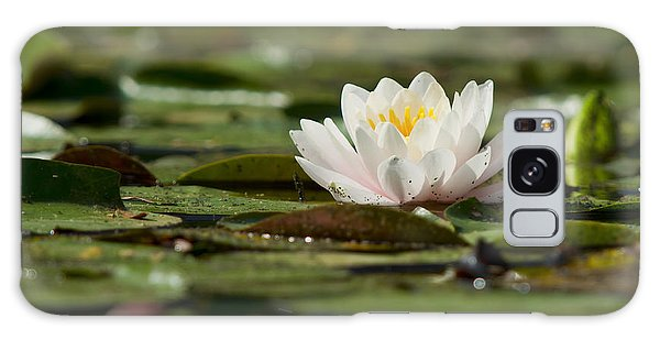 Water Lily Galaxy Case by Larry Bohlin