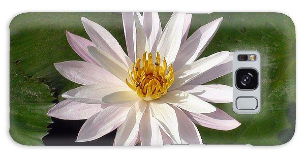 Water Lily Galaxy Case by Sergey Lukashin
