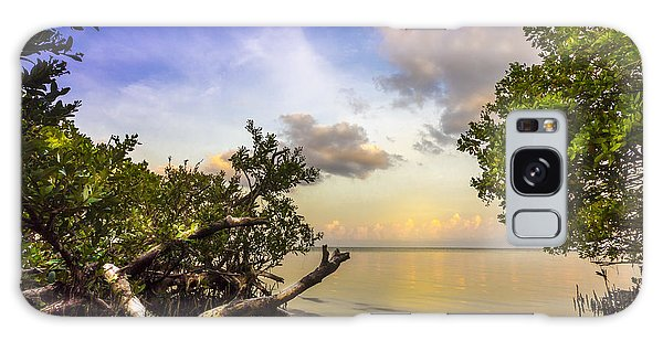 Mangrove Galaxy Case - Water Sky by Marvin Spates