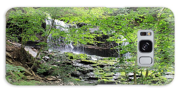 Waterfall Ricketts Glen State Park Pa Galaxy Case