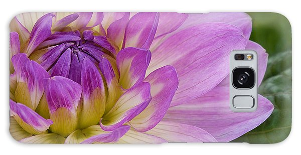 Waterlily Dahlia Galaxy Case