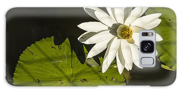 Waterlily Through A Fence Galaxy Case by Terry Rowe