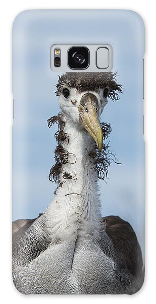Albatross Galaxy Case - Waved Albatross Molting Juvenile by Pete Oxford
