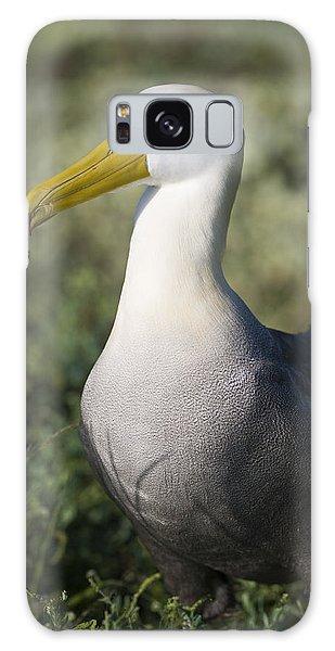 Waved Albatross Galaxy Case