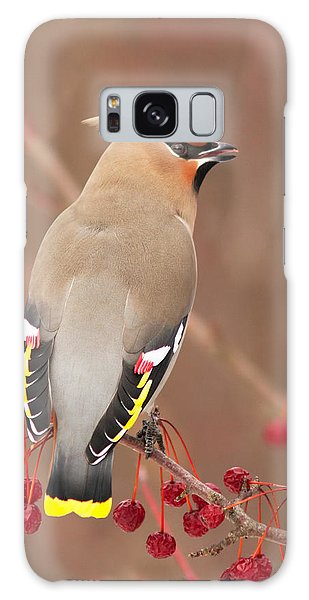 Waxwing In Winter Galaxy Case