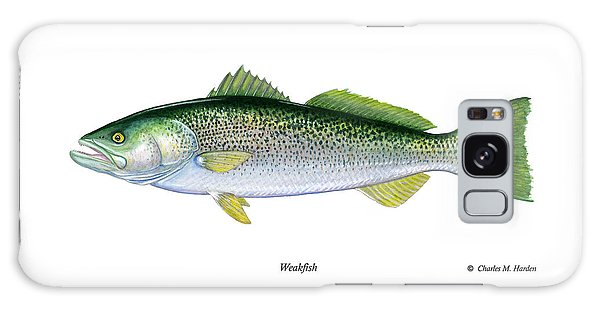 Weakfish Galaxy Case
