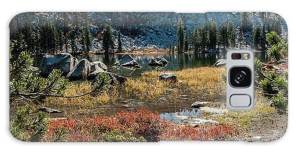 Weaver Lake- 1-7695 Galaxy Case