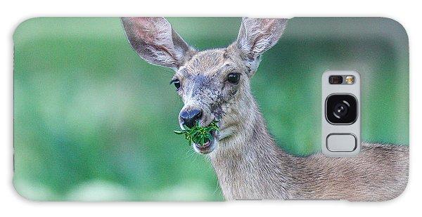 Weed Deer Galaxy Case