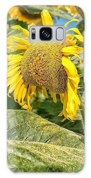 Weeping Sunflower Galaxy Case