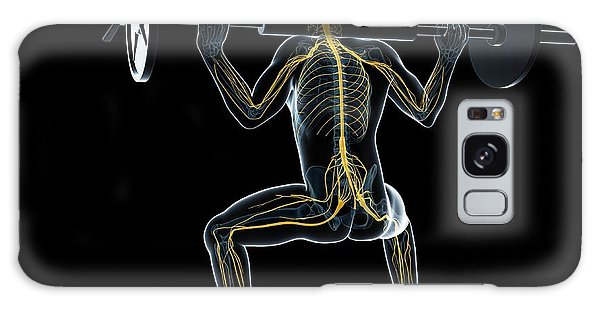 Nervous System Galaxy Case - Weightlifter by Sciepro/science Photo Library