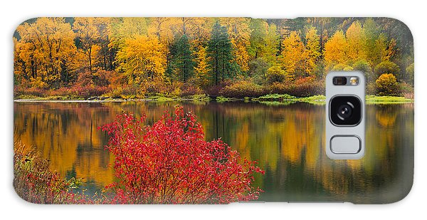 Wenatchee River Reflections Galaxy Case