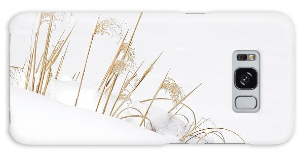 West Falls Winter Grass Galaxy Case