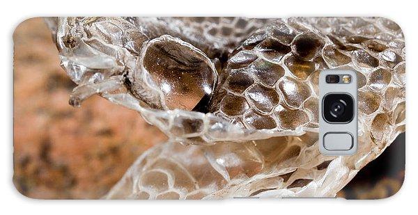 Western Diamondback Snake Skin Galaxy Case