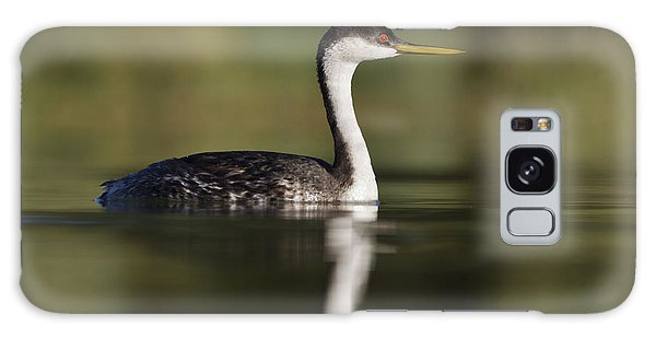Western Grebe Galaxy Case