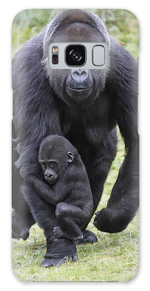 Western Lowland Gorilla Walking Galaxy Case by Duncan Usher