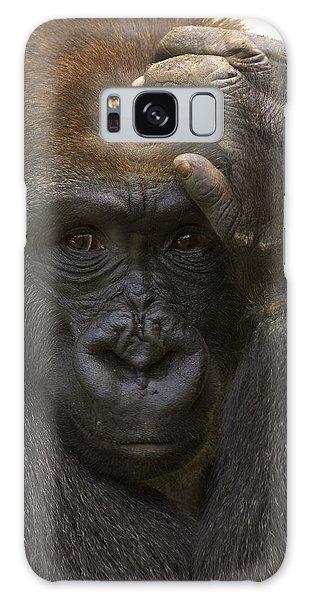Western Lowland Gorilla With Hand Galaxy Case by San Diego Zoo