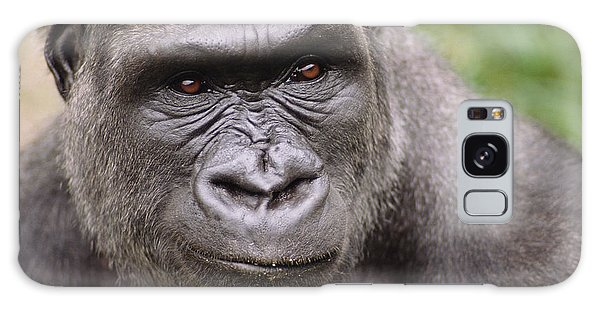 Western Lowland Gorilla Young Male Galaxy Case