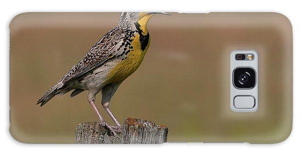 Western Meadowlark.. Galaxy Case