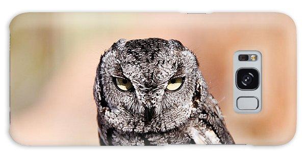 Western Screech Owl Galaxy Case
