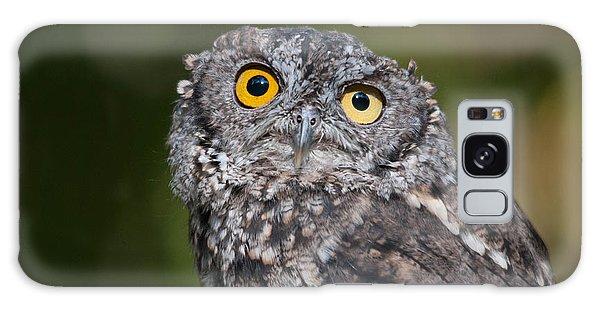 Western Screech Owl No. 3 Galaxy Case