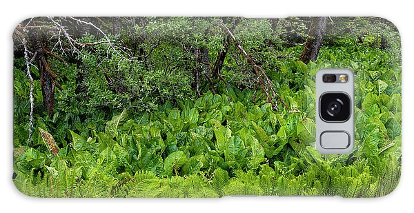 Grass Snake Galaxy Case - Western Skunk Cabbages Lysichiton by Panoramic Images