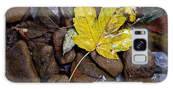 Wet Autumn Leaf On Stones Galaxy Case