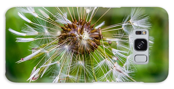 Wet Dandelion. Galaxy Case