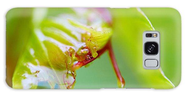 Wet Grape Leaf  Galaxy Case
