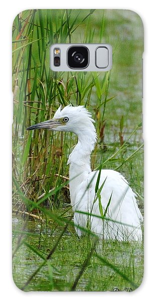 Wet Juvenile Little Blue Heron Galaxy Case by Dan Williams