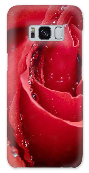 Wet Rose In Mexico Galaxy Case