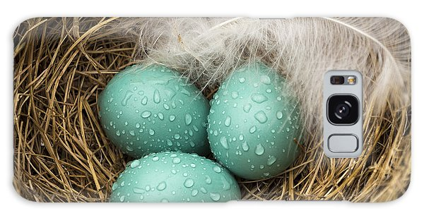 Wet Trio Of Robins Eggs Galaxy Case