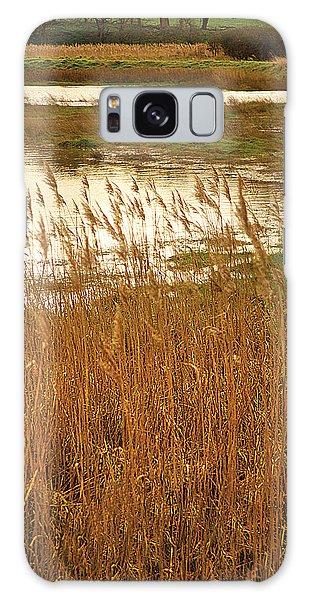 Wetlands Galaxy Case by David Davies