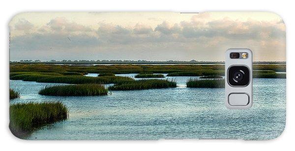 Wetlands Galaxy Case