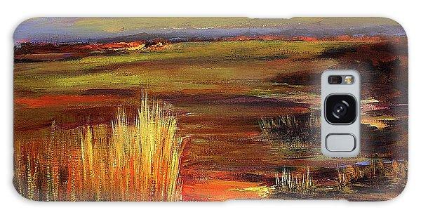 Wetlands Sunset Iv Galaxy Case