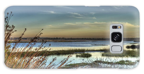 Wetlands Sunset Galaxy Case by Richard Stephen