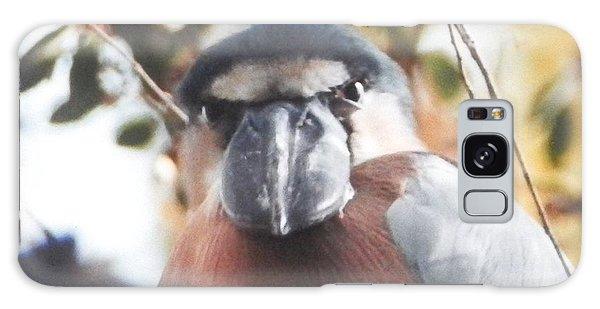 Funny Bird Face Galaxy Case by Belinda Lee