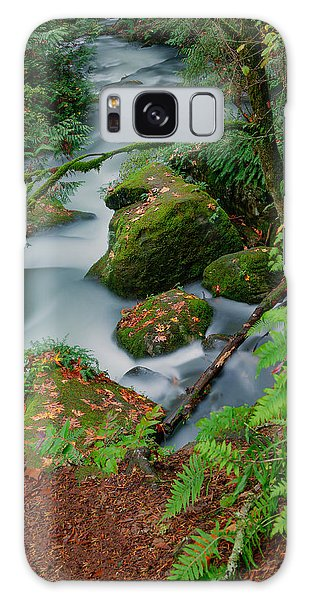 Whatcom Falls 1 Galaxy Case