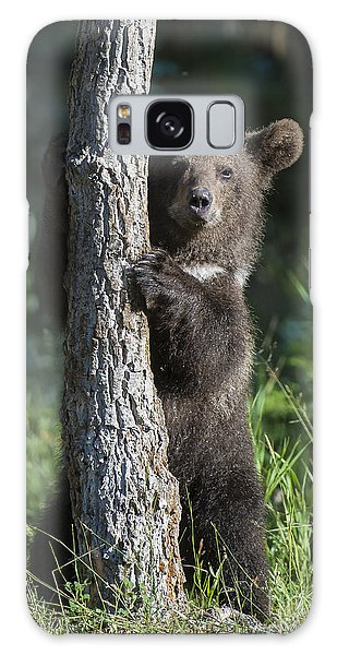 Grizzly Bears Galaxy Case - What's Mine Is Mine IIi by Sandra Bronstein