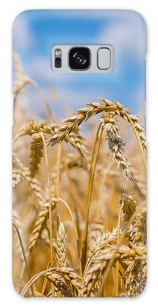 Galaxy Case - Wheat by Cheryl Baxter