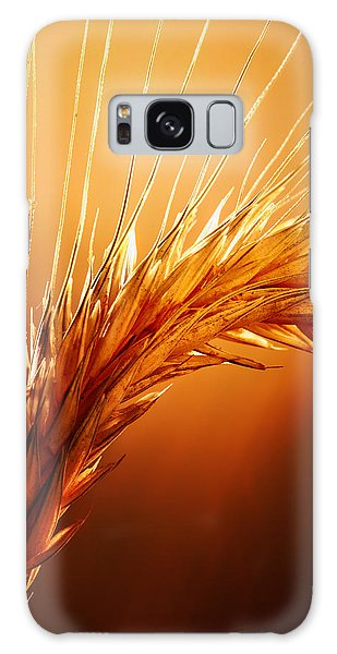 Wheat Close-up Galaxy Case