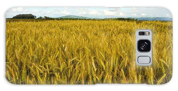 Wheat Field Galaxy Case by Crystal Hoeveler