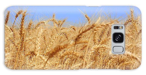 Wheat Field Galaxy Case