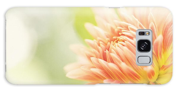 When Summer Dreams Galaxy Case by Beve Brown-Clark Photography