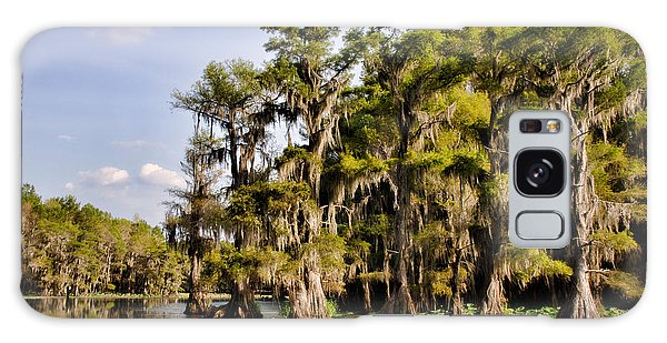 Where The Cypress Grows Galaxy Case by Lana Trussell