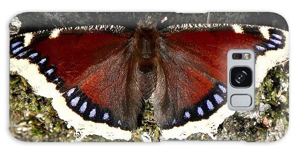 Whistler Butterfly Galaxy Case by Amanda Holmes Tzafrir