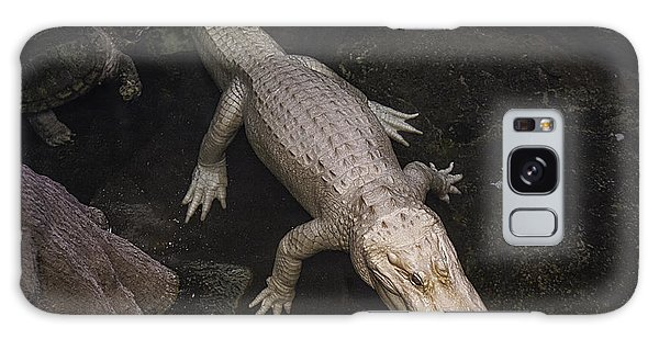White Alligator Galaxy Case