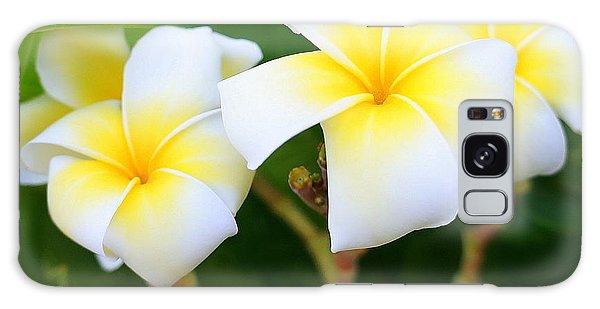White And Yellow Pumeria Galaxy Case