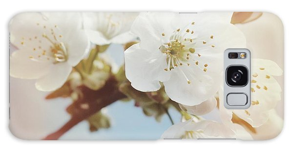 Detail Galaxy Case - White Apple Blossom In Spring by Matthias Hauser