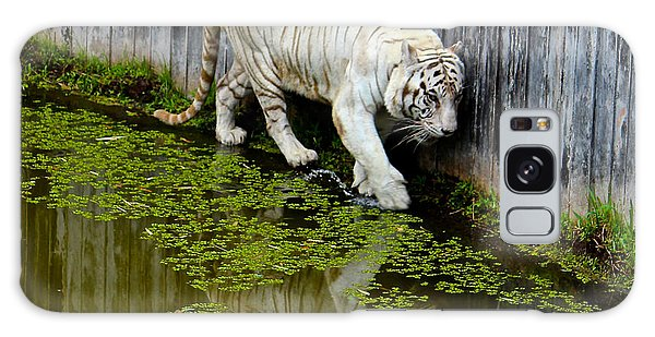 White Bengal Tiger Galaxy Case by Venetia Featherstone-Witty